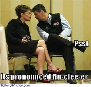 Palin-nuclear
