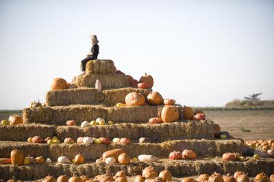 Little girl on haystack