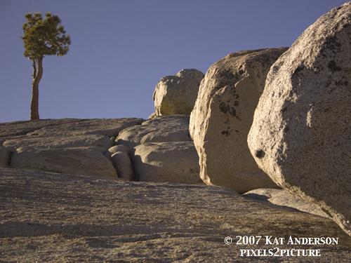 Yosemite_ridge