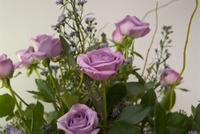 Bhirthday_roses