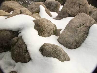 Snowatyosemite
